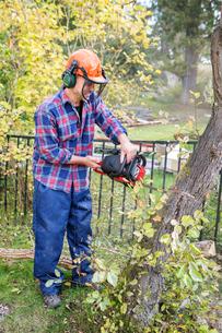 Sweden, Sodermanland, Nacka, Man cutting treeの写真素材 [FYI02854615]