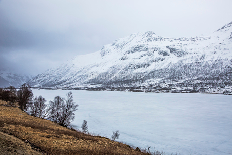 Snow covered mountains and fjord, Austpollen, Hinnoya, Norwayの写真素材 [FYI02854620]