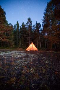 Sweden, Medelpad, Bjorkofjarden, Tent in forest at nightの写真素材 [FYI02854647]