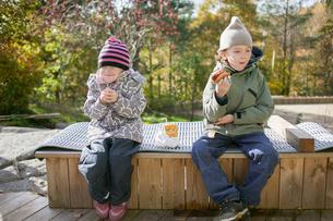 Sweden, Vastergotland, Lerum, Girl (4-5) and boy (6-7) having snack outdoorsの写真素材 [FYI02854760]