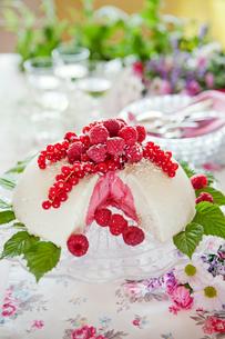 Sweden, Vanilla ice cream and raspberry sorbetの写真素材 [FYI02854905]