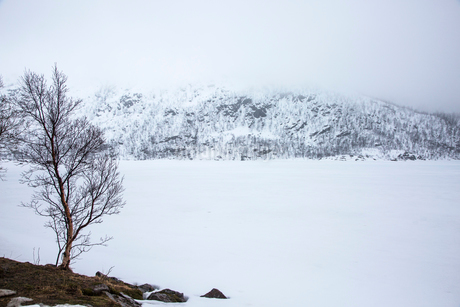 Tranquil, snow covered landscape, Kanstad, Hinnoya, Norwayの写真素材 [FYI02854978]