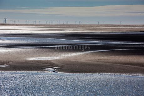 Wind turbines in distance beyond bay, Morecambe Bay, UKの写真素材 [FYI02855010]