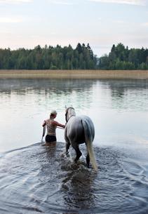 Finland, Lansi Uusimaa, Raasepori, Woman leading horse into lakeの写真素材 [FYI02855229]
