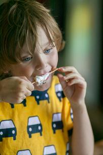 Sweden, Vastergotland, Lerum, Boy (6-7) eating chickenの写真素材 [FYI02855452]