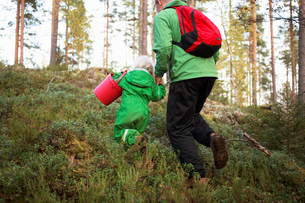 Finland, Keski-Suomi, Jyvaskyla, Rear view of father with daughter (2-3) in pine tree forestの写真素材 [FYI02855495]