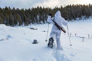 Sweden, Vasterbotten, Tarnaby, Goose hunter (16-17) snowshoeing in forestの写真素材 [FYI02855615]