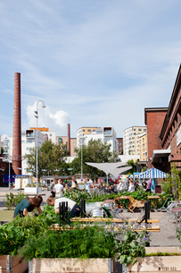 Finland, Uusimaa, Helsinki, Sornainen, Open air restaurant with people in backgroundの写真素材 [FYI02855655]