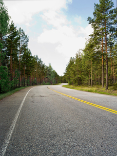 Finland, Uusimaa, Hanko, Road in pine tree forestの写真素材 [FYI02855665]