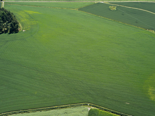 Finland, Uusimaa, Porkkala, Aerial view of fieldの写真素材 [FYI02855730]