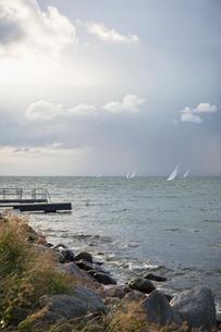 Sweden, Skane, Skanor, Sailboats on seaの写真素材 [FYI02855791]
