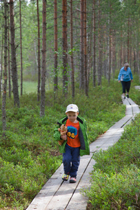 Finland, Pohjois-Savo, Tuusniemi, Grandmother with grandson (2-3) searching for blueberries in foresの写真素材 [FYI02855818]