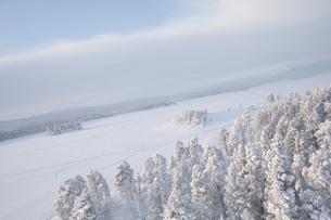 Sweden, Lappland, Jokkmokk, Aerial view of forest and frozen lake in winterの写真素材 [FYI02855820]