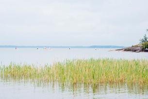 Finland, Varsinais-Suomi, Satakunda, Eura, Men competing on paddleboardsの写真素材 [FYI02855864]