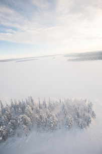 Sweden, Lappland, Jokkmokk, Trees and frozen lake in winterの写真素材 [FYI02855872]