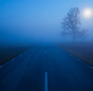 Sweden, Skane, Klingavalsan nature reserve, Veberod, Road in fogの写真素材 [FYI02855877]