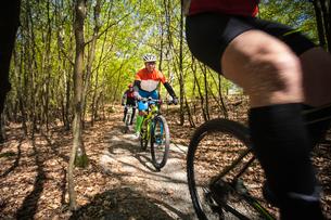 Sweden, Blekinge, Solvesborg, Ryssberget, Mature men riding on mountain bikes through forestの写真素材 [FYI02855931]