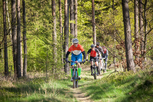 Sweden, Blekinge, Solvesborg, Ryssberget, Mature men riding on mountain bikes through forestの写真素材 [FYI02855997]