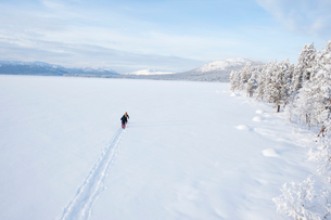 Sweden, Lappland, Jokkmokk, Three men cross-country skiing across frozen lakeの写真素材 [FYI02856020]