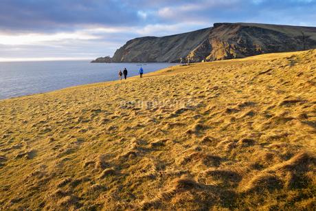 Garths Ness in Shetland, Scotlandの写真素材 [FYI02856084]