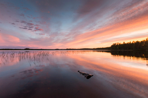 Lake at sunset in Osterjorn, Swedenの写真素材 [FYI02856110]