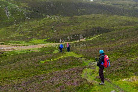 Group of women hiking in Muckle Roe, Scotlandの写真素材 [FYI02856177]