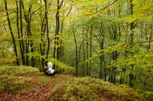 Sweden, Skane, Soderasens National Park, Klova Hallar, Mid adult woman sitting in forestの写真素材 [FYI02856194]
