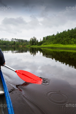Rowing in Vasterbotten, Swedenの写真素材 [FYI02856205]