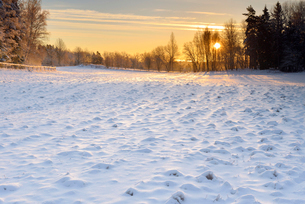 Field covered in snow in Lidingo, Swedenの写真素材 [FYI02856238]