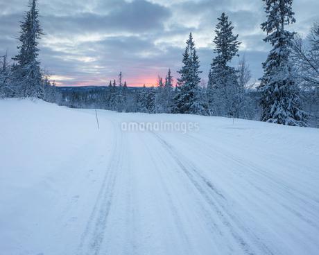 Rural road during winter in Fulufjallet National Park, Swedenの写真素材 [FYI02856262]
