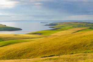 Coastal landscape in Shetland, Scotlandの写真素材 [FYI02856280]