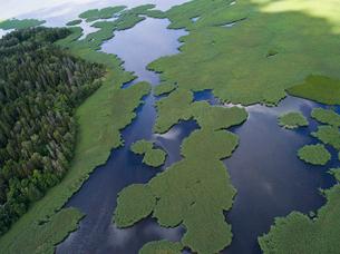 Finland, Uusimaa, Siuntio, View of seaの写真素材 [FYI02856293]
