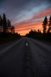 Forest road at sunset in Vasterbotten, Swedenの写真素材 [FYI02856302]