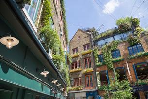 Brick buildings in London, Englandの写真素材 [FYI02856332]