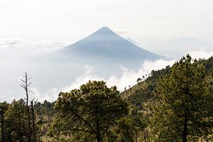 Volcan de Fuego in Acatenango, Guatemalaの写真素材 [FYI02856351]
