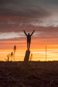 Woman standing on a tree stump at sunset in Vasterbotten, Swedenの写真素材 [FYI02856357]