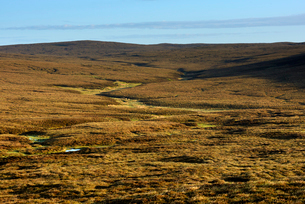 UK, Scotland, Shetland, Yell, View of grassland on sunny dayの写真素材 [FYI02856404]