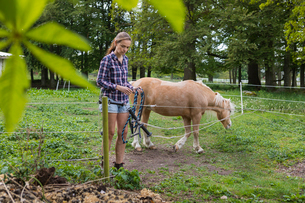 Agricultural worker holding rope next to a ponyの写真素材 [FYI02856422]