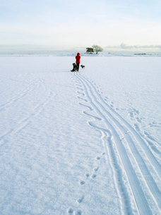 Finland, Nyland, Drumso, Woman pulling son (4-5) on sledの写真素材 [FYI02856602]