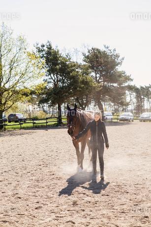 Teenage girl leading a horse in Swedenの写真素材 [FYI02856615]