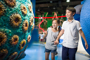 Chinese children in science and technology museumの写真素材 [FYI02856624]