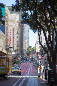 Trams on a street in San Francisco, Californiaの写真素材 [FYI02856700]