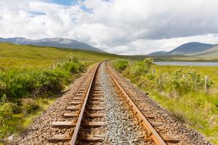 Railroad tracks through field in Scotlandの写真素材 [FYI02856769]