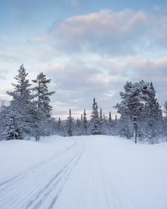 Rural road during winter in Fulufjallet National Park, Swedenの写真素材 [FYI02856939]