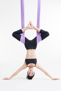 Young Chinese woman practicing aerial yogaの写真素材 [FYI02856955]