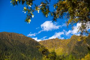 Nanyi valley in Tibet, Chinaの写真素材 [FYI02857013]