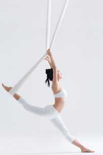 Young Chinese woman practicing aerial yogaの写真素材 [FYI02857139]