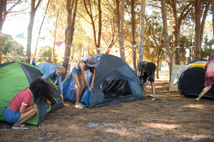 Friends setting up their tents together on fieldの写真素材 [FYI02857178]