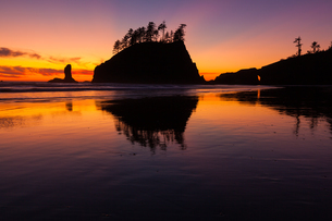 Second Beach at sunset in Olympic National Parkの写真素材 [FYI02857719]