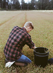 A cranberry farm. A young man working on the land.の写真素材 [FYI02857814]